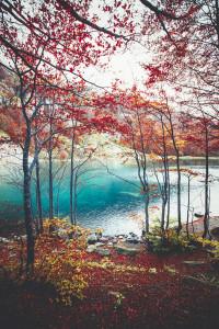 autumn_nhlwx8jmiC1qz62xqo1_r2_1280